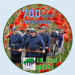 700JahreBuchholzTitelT.jpg